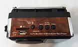 Радиоприемник NEEKA NK-203 USB, фото 2