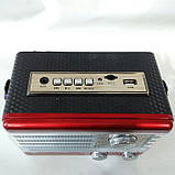 Радіоприймач Puxing PX-P 10 BT, фото 2