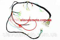 Проводка основная (ТАТА), фото 1