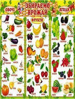 Плакат школьный: Собираем урожай