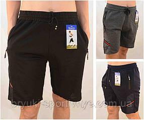 Шорты мужские трикотажные с молниями на карманах Бриджи Золото - 3 кармана