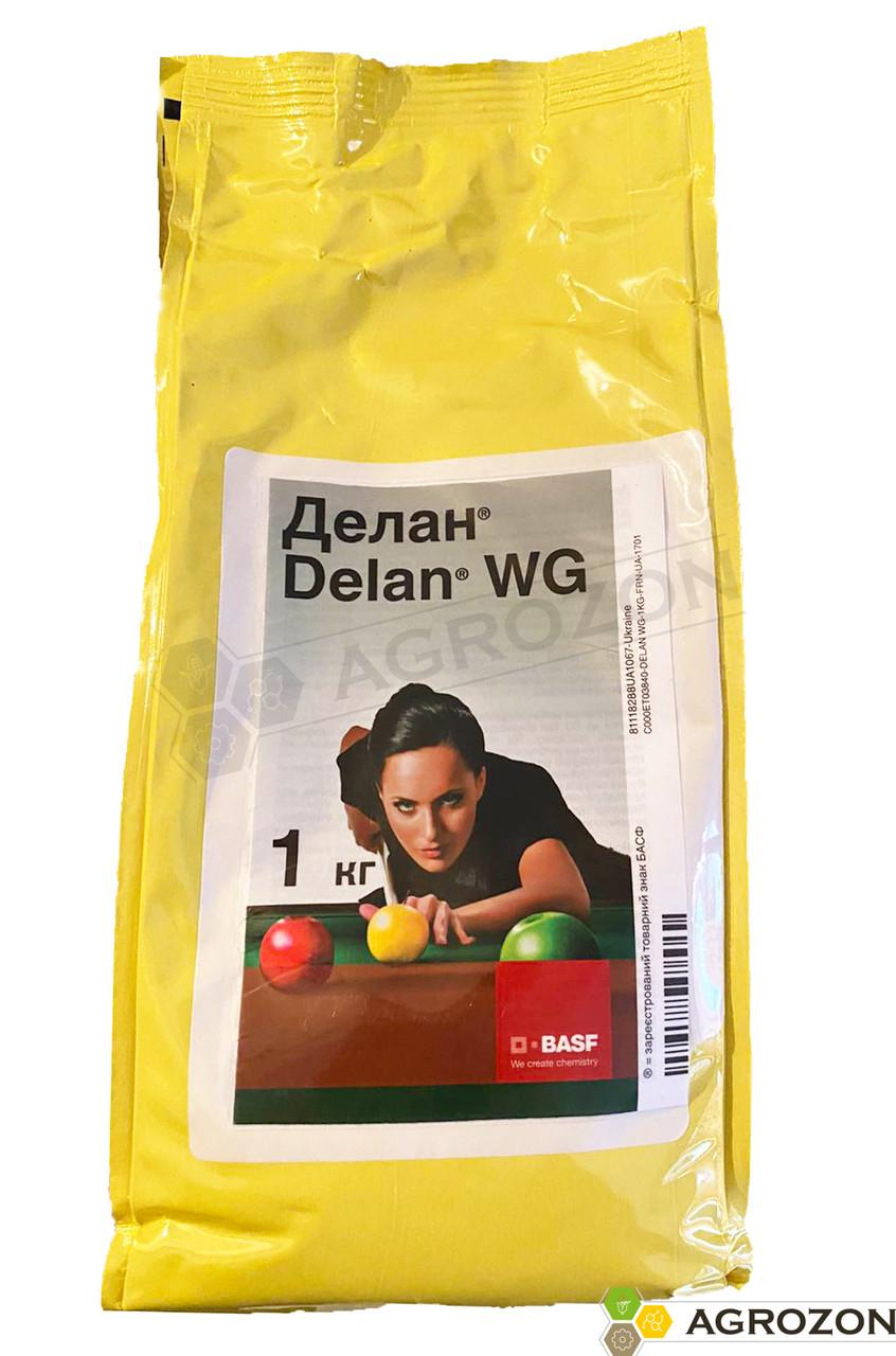 Фунгіцид Делан BASF - 1 кг