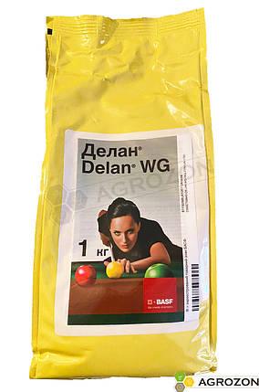 Фунгіцид Делан BASF - 1 кг, фото 2