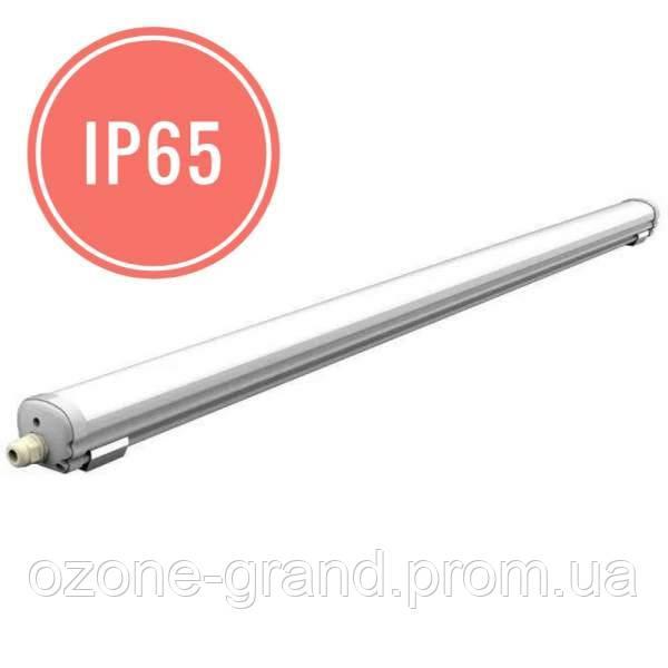 Влагозащищенный светильник 36W 3300 Лм IP65 1.2m 5000K