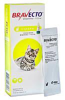 BRAVECTO (Бравекто) SPOT-ON (СПОТ-ОН) капли от блох и клещей для кошек весом от 1.2 - 2.8кг, 1 пипетка