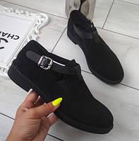 Туфлі жіночі низькі чорні екозамша, фото 1