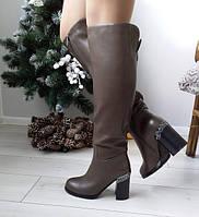 Чоботи жіночі коричневі зимові екошкіра на каблуку