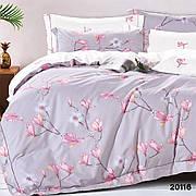 20116 Полуторное постельное белье ранфорс Viluta