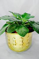 Кашпо, цветочный горшок латунь Германия, фото 1