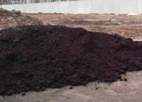 Чернозем садовый высокогумусный