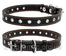 Ошейник для собак COLLAR (Коллар) безразмерный, черный (ширина 20 мм, длина до 50 см)