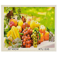 Картинка по номерам KTL 1335 (30-40 см)