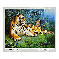 """Картина по номерам (30-40 см) """"Тигры"""" арт. KTL 1672"""