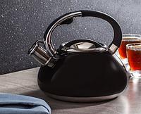 Чайник Edenberg EB-2452 со свистком из нержавеющей стали 3 л | Свистящий металлический чайник, фото 1