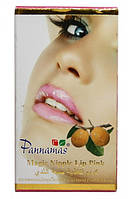 Стойкая помада для губ Pannamas розовая