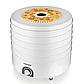 Сушилка для овощей и фруктов AURORA AU-3370 электрическая | сушка для сухофруктов, фото 2