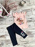 Костюм для дівчат( футболка + довгі шорти), різні кольори, розмір 92, 98, 104, 110, 116 92, персиковый