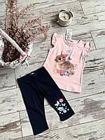 Костюм для дівчат( футболка + довгі шорти), різні кольори, розмір 92, 98, 104, 110, 116 92, Розовый