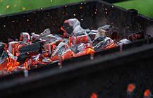 Пластиковое опахало   Веер для розжига мангала Fire Wood, фото 3