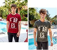 Мужская футболка молодежная 4074, фото 1