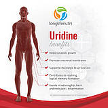Уридин монофосфат LongLifeNutri, 300 мг - 120 капсул, фото 2