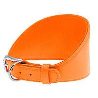 Ошейник  Серия Glamour для борзых собак, без украшений  Оранжевый