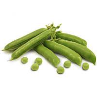 Горох овощной сорт Тиара