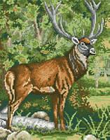 Схема на канве для вышивки крестом Благородный олень Ркан 4104