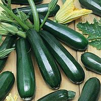 Семена кабачка сорт Скворушка (зеленый)