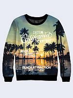 Свитшот Beach attraction (Размер: XL(52), Фасон: Мужской)