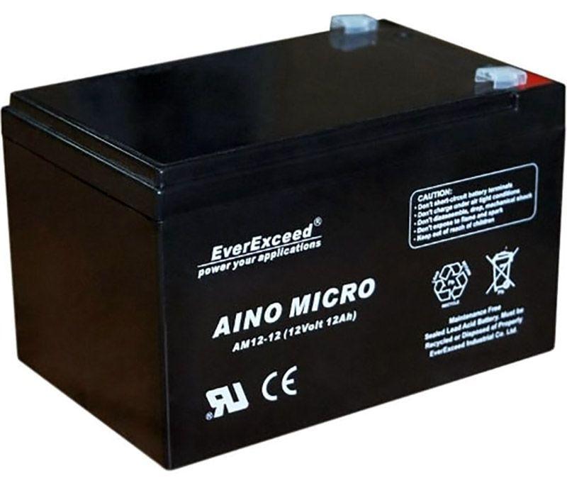 Аккумуляторная батарея EverExceed 12V 12Ah (AM 12-12)