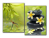 Салатовая Модульная картина настенная с часами Цветы на камне у воды 30x42 30x42 см