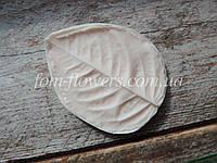Молд Лист Розы L 7х6 см, фото 1