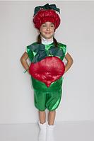 Карнавальный костюм Буряк, фото 1
