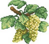 Схема на канве для вышивки крестом  Гроздь винограда Ркан 5019
