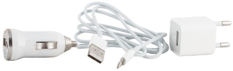 Автомобильное, Сетевое зарядное устройство  PowerPlant Charger Kit - Lightning (iPhone 5) 1A (DV00DV5041)