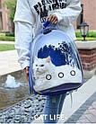 Рюкзак переноска для кошки собаки Синий, сумка для кота собак и домашних животных прозрачный, рюкзаки с иллюминатором переноски Cosmopet Upet AnimAll, фото 7