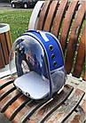 Рюкзак переноска для кошки собаки Синий, сумка для кота собак и домашних животных прозрачный, рюкзаки с иллюминатором переноски Cosmopet Upet AnimAll, фото 8