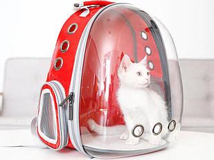 Рюкзак переноска для кошки собаки Красный, сумка для кота собак и домашних животных прозрачный рюкзаки с иллюминатором переноски Cosmopet Upet AnimAll