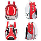 Рюкзак переноска для кошки собаки Красный, сумка для кота собак и домашних животных прозрачный рюкзаки с иллюминатором переноски Cosmopet Upet AnimAll, фото 8