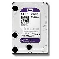 Жесткий диск Western Digital 2TB SATAIII (WD20PURZ)