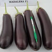 Мадалена F1 насіння баклажану Vilmorin 1 000 насінин