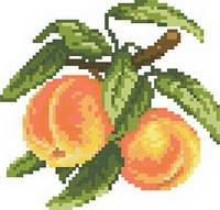 Схема на канве для вышивки крестом Сочные персики Ркан 5020