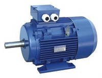 Электродвигатель 5А 280M6, 90 кВт 1000 об./мин. общепромышленный трехфазный