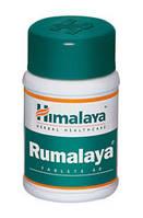 Румалая, Rumalaya (60tab). Himalaya