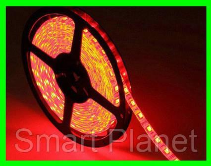 LED Ленты (3528) Red - Красный длинна 5м Лед (ВидеоОбзор), фото 2