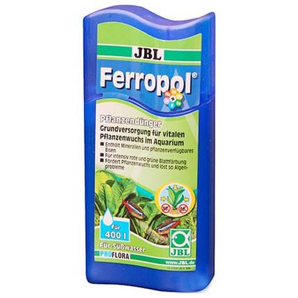 Удобрение JBL PROFLORA Ferropol для растений в пресноводных аквариумах, 625 мл, фото 2