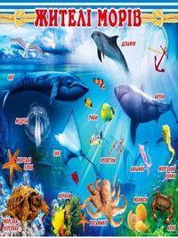 Плакат школьный: Жители морей