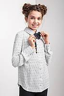 Стильна підліткова блузка з довгими рукавами і коміром на гудзиках
