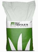 Насіння газонної трави Robustica (Робустика) DLF Trifolium 20кг